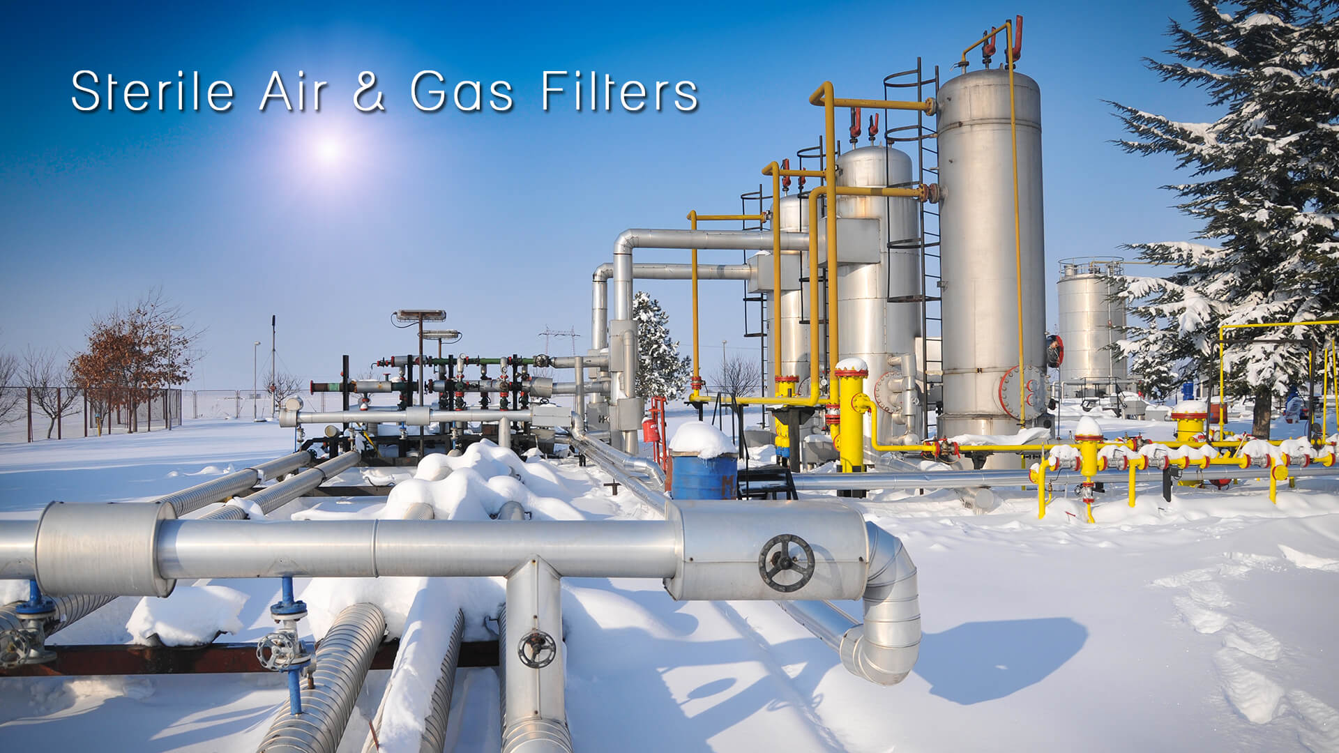 STERILE AIR AND GAS FILTERS